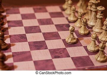 saragossa, scacchi, apertura