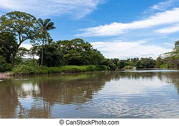 Sarapiqui river - Puerto Viejo de Sarapiqui river in Costa...