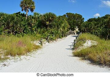 sarasota, tengerpart, florida, délutáni pihenő