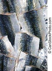 sardine, filet poissons, texture, peau, marché