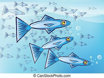 Sardines - An illustration of stylized sardine fish. Three...