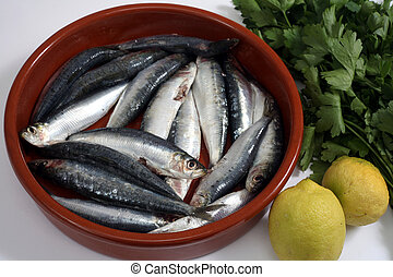 sardines horizontal - Sardines (pilchards) in a rustic bowl...