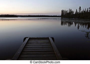 saskatchewan, 黎明, 湖, 北方, 山猫
