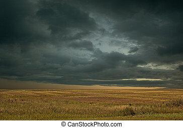 Saskatchewan Prairie Storm