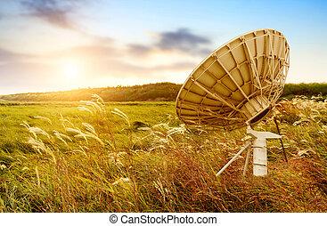 satellit, antenn