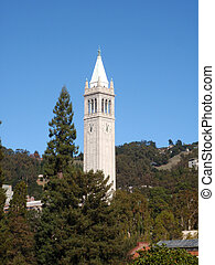 sather, universität, campanile, bäume, auch, wissen, oben, berkeley, turm, kalifornien, hebt
