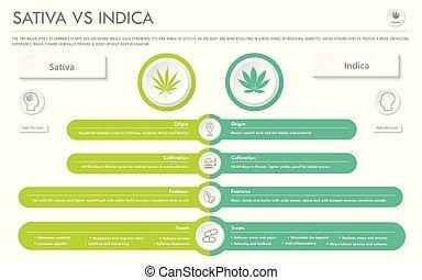 sativa, indica, infographic, horizontal, business, vs