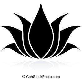 satz, lotos