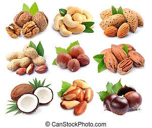 satz, nuts.