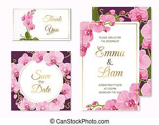 satz, phalaenopsis, schablone, wedding, karten, orchidee