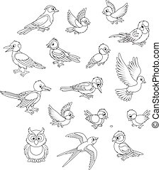 satz, vögel