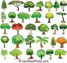 satz, von, bäume
