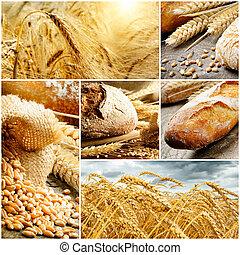 satz, von, traditionelle , bread, weizen, und, getreide