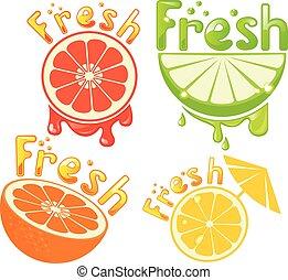 satz, zitrone, pampelmuse, orange, frisch, limette