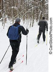 saudável, ativo, vida, (skiing), maneira