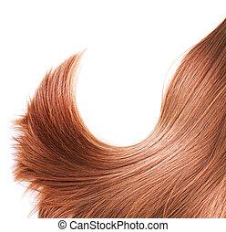 saudável, cabelo marrom, isolado, branco