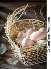 saudável, fazenda, ovos, closeup