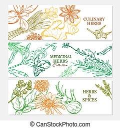 saudável, plantas, horizontais, natural, bandeiras