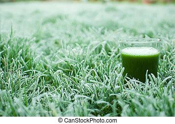 saudável, suco, detox, verde