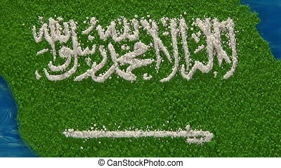 Saudi Arabia map - zoom