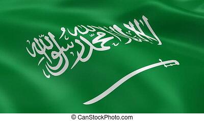Saudi Arabian flag in the wind. Part of a series.