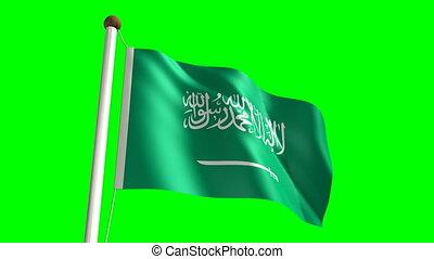 saudische arabische markierungsfahne, video