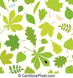 saule, différent, lilas, chêne, insectes, modèle, feuilles,...