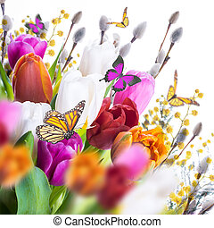 saule, tulipes, butterflies., multi-coloré