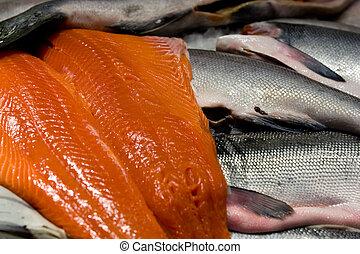 saumon, roi