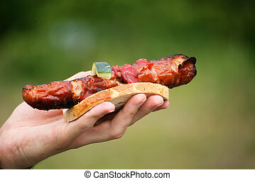 Sausage in hand green background nature barbecue