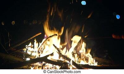 Sausage smoke wood fire
