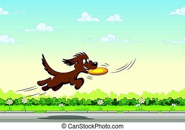 saut, prises, frisbee, chien