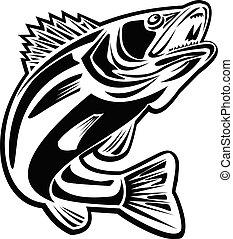 sauter, barramundi, haut, blanc, retro, noir, fish