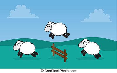 sauter, champ, mouton, barrière