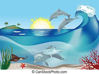 sauter, dauphins