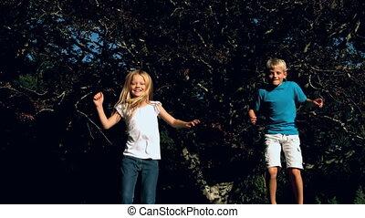 sauter, ensemble, soeur, frère