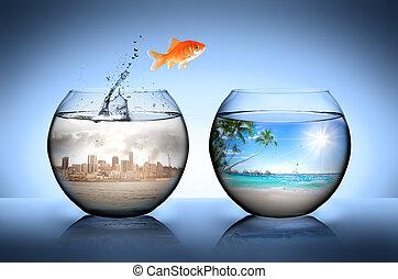 sauter, loin, ville, poisson rouge