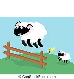 sauter, mouton, barrière