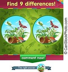 sauterelle, différences, 9