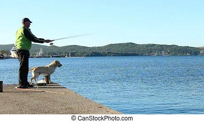 sauts, chien, mer