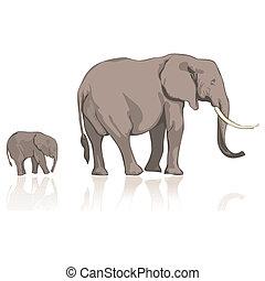 sauvage, éléphants