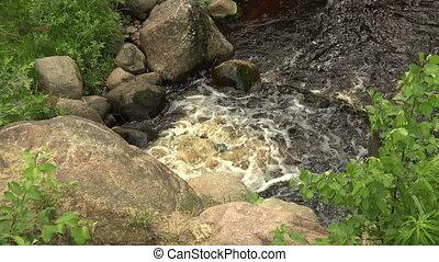 sauvage, 4k., rivière, stones.