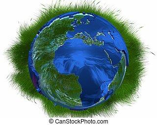 sauvage, la terre, herbes