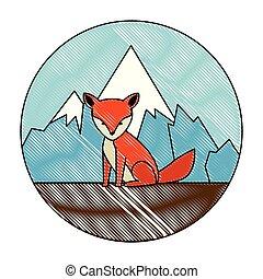 sauvage, renard, paysage, canadien
