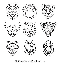 sauvage, tête, groupe, animal
