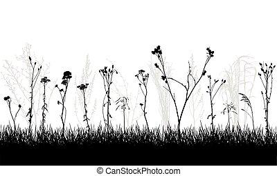 sauvage, usines, mauvaises herbes, meadow., vecteur, illustration., silhouette