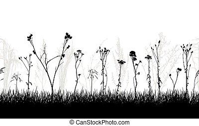 sauvage, vecteur, illustration., pré, usines, seamless, silhouette., mauvaises herbes, modèle
