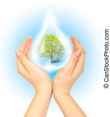 sauver, planète verte, concept