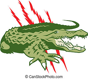 A large, vicious and aggressive alligator