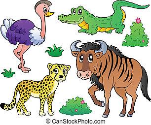 savana, 2, animali, collezione